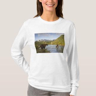 USA, Alaska, Katmai Nationalpark, Kinak Bucht, 2 T-Shirt