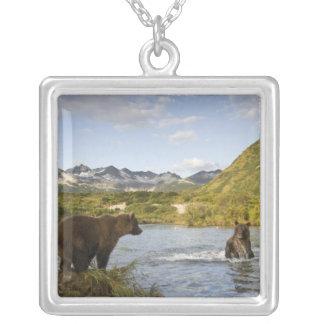 USA, Alaska, Katmai Nationalpark, Kinak Bucht, 2 Versilberte Kette