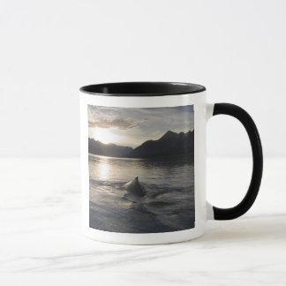 USA, Alaska, Nationalpark Glacier Bays, Tasse