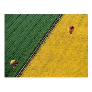 USA, Arizona, Val Vista. Heißluftballone steigen Postkarte