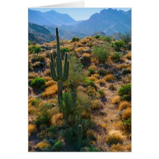 USA, Arizona. Wüsten-Ansicht Karte