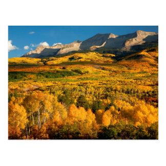 USA, Colorado, Gunnison staatlicher Wald Postkarte