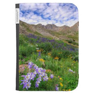 USA, Colorado. Wildblumen im amerikanischen Becken