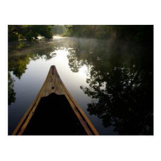 USA, Florida, Ocala staatlicher Wald, Alexander Postkarte