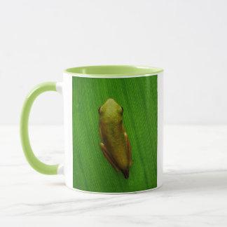 USA, Georgia, Savanne, kleiner Frosch auf Blatt Tasse