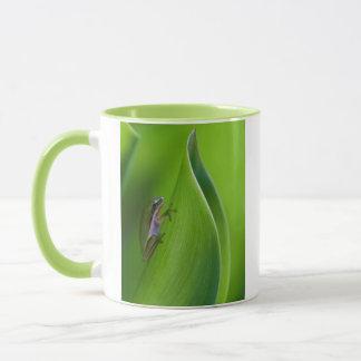 USA, Georgia, Savanne, kleiner Frosch auf einem Tasse