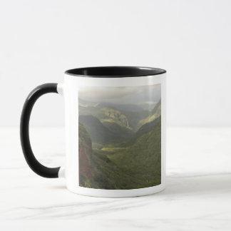 USA, Hawaii, Kauai, Schlucht übersehen. (Rf) Tasse