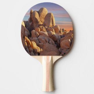 USA, Kalifornien, Joshua-Baum-Nationalpark Tischtennis Schläger