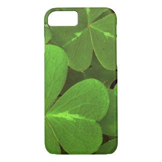 USA, Kalifornien, Muir Holz. Nahaufnahme des Klees iPhone 8/7 Hülle