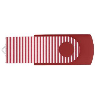 USA kennzeichnen die roten und weißen Streifen USB Stick