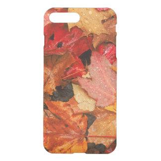 USA, Maine. Herbstahorn-Blätter iPhone 8 Plus/7 Plus Hülle