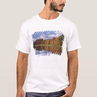 USA, Massachusetts, Acton. Reflexion des Herbstes T-Shirt