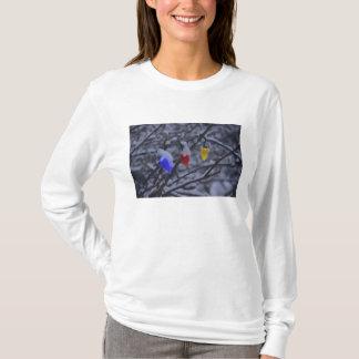 USA, Neu-England, Massachusetts, Lesung, 2 T-Shirt