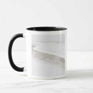 USA, New- YorkStaat, Rockaway Strand, Strand Tasse