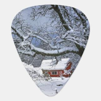 USA, Oregon, Clackamas County. Frischer Schnee Plektron