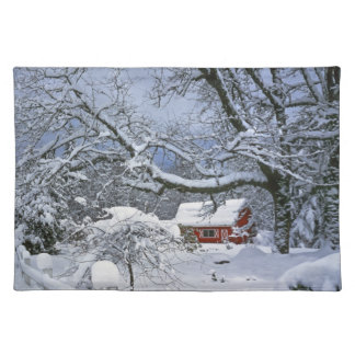 USA, Oregon, Clackamas County. Frischer Schnee Tisch Set