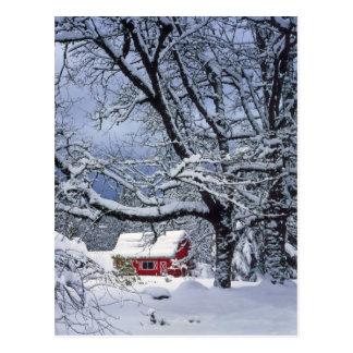 USA, Oregon, Clackamas County. Neue Schneedecke Postkarte
