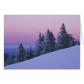 USA, Oregon, Deschutes staatlicher Wald, Dämmerung Karte