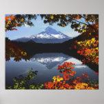 USA, Oregon, Mt.-Hauben-nationaler Wald Plakatdruck