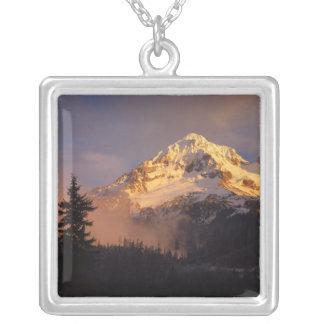 USA, Oregon, Mt.-Hauben-staatlicher Wald. Rollen Versilberte Kette