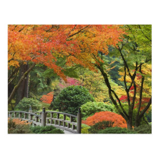 USA, Oregon, Portland. Hölzerne Brücke und Ahorn Postkarte