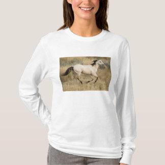 USA, Oregon, Seneca, Ponderosa Ranch. Pferd T-Shirt