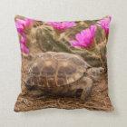 USA, Texas, Hidalgo County. Schildkröte Kissen