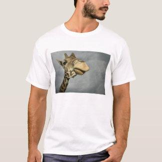 USA, Texas, versteinerter Kante-Tier-Bereich, T-Shirt