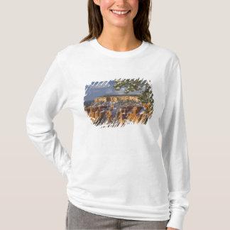 USA, Utah, Bryce Schlucht-Nationalpark. T-Shirt