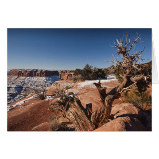 USA, Utah, Moab. Canyonlands Nationalpark, Karte