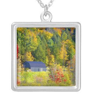 USA, Vermont. Fall foilage entlang Landstraße 100 Versilberte Kette