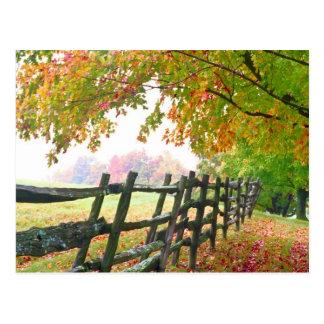 USA, Vermont. Zaun unter Falllaub Postkarte
