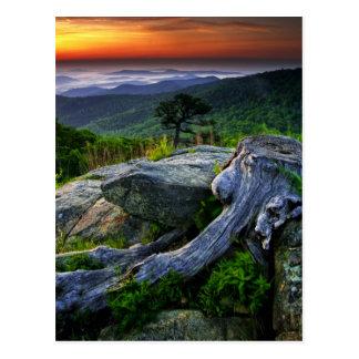USA, Virginia, Shenandoah Nationalpark Postkarte