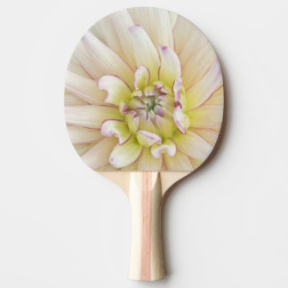 USA, Washington, Bellevue, Bellevue botanische 2 Tischtennis Schläger