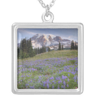 USA, Washington, der Mount Rainier NP, der Mount Versilberte Kette