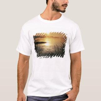 USA, Washington, Lopez-Insel, Morgennebel an T-Shirt