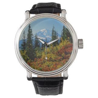 USA, Washington, Nationalpark des Mount Rainier 2 Uhr