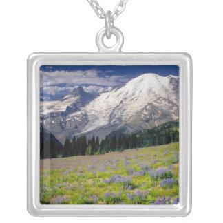 USA, Washington, Nationalpark des Mount Rainier Versilberte Kette