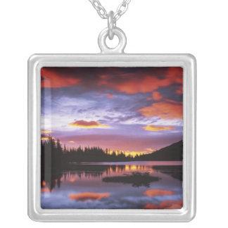 USA, Washington, Nationalpark des Mount Rainier, Versilberte Kette