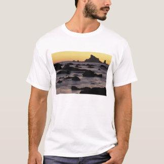 USA, Washington, olympischer Nationalpark, T-Shirt