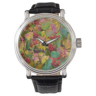 USA, Washington, Spokane County, Weißdorn-Blätter Armbanduhr