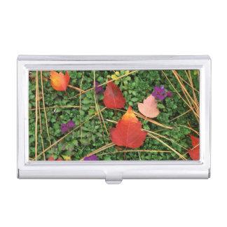 USA, Washington, Spokane County, Weißdorn-Blätter Visitenkarten Etui