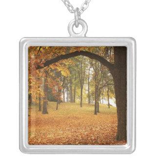 USA, Washington, Spokane, Manito Park, Herbst 2 Versilberte Kette