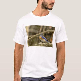 USA, Washington, Yakima. Männliche Westerndrossel T-Shirt