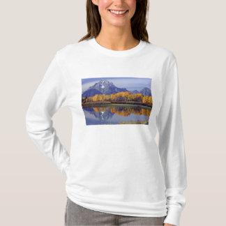 USA, Wyoming, großartiger Teton Nationalpark. Mt. T-Shirt
