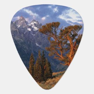 USA, Wyoming, großartiges Teton NP. Eine einzige Plektron