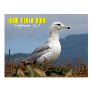 Utah-Staats-Vogel - Kalifornien-Möve Postkarte