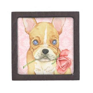 Valentine-Rose Frenchie Kiste