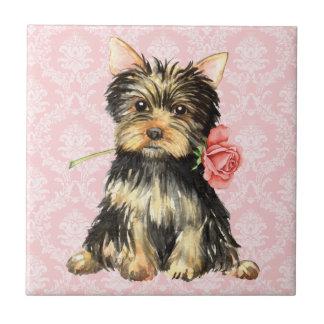 Valentine-Rose Yorkie Fliese
