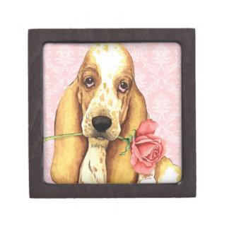 Valentine-Rosen-Dachshund Kiste